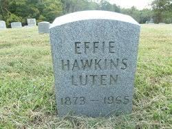Effie M Luten (Hawkins) (c.1873 - c.1965) - Genealogy