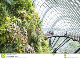 flower dome and cloud forest editorial