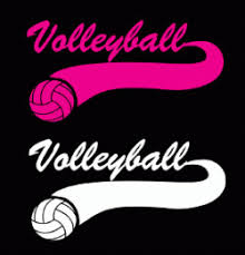 Volleyball Swoosh Window Decal Choice Of Pink Or White Volleyball Window Decals