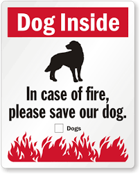 Pet Inside Stickers Please Save Our Pets Stickers