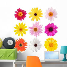 Collection Daisy Flowers Wall Decal Sticker Set Wallmonkeys Com