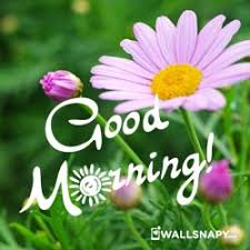 2019 good morning hd image es for