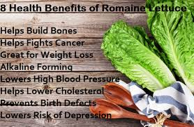 why romaine lettuce is the best real