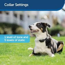 Petsafe Yardmax Electric Dog Fence Collar Reviews Wayfair