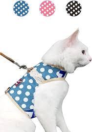 Pet Supplies Yizhi Miaow Escape Proof Kitten Harness With Leash X Small Adjustable Kitten Walking Jackets Padded Kitten Vest Polka Dot Blue Amazon Com