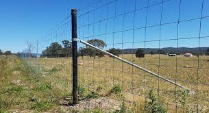 Exclusion Fencing Reduce The Impact From Feral Pests Rotech Rural