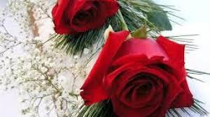 اجمل صور ورود حب جميلة للاحتفال بعيد الحب و الفلانتين داي