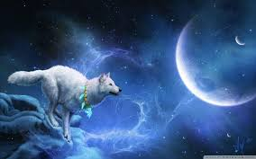 cool wolf backgrounds wallpaper cave
