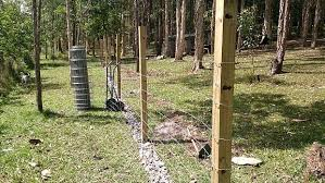 How To Build A Dog Proof Fence To Protect Free Range Chickens