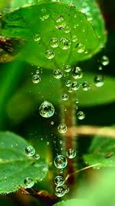Pin by Myrna Scott on textures and patterns | Water drop ...