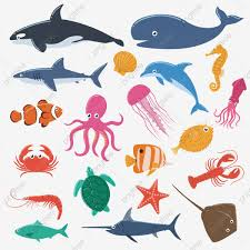 Set Of Sea Animals Animal Creature Fish Png And Vector With Transparent Background For Free Download