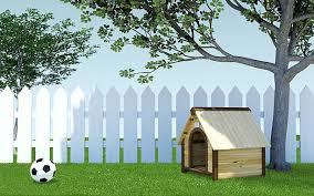 Dog Kennel On Grass Meadow With Soccer Ball And Fence Stock Photo Download Image Now Istock