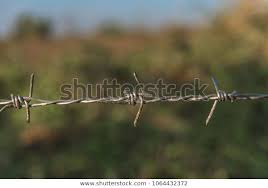 Barbed Wire Fence Has Low Cost Buildings Landmarks Stock Image 1064432372