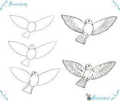 Носорог Україна - Вчимось малювати пташку з... | Facebook