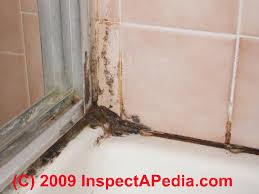 50 mold on wallpaper in bathroom on