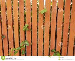 Wooden Fence Painted In Orange Stock Image Image Of Grow Board 93263545
