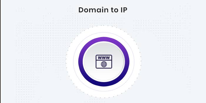 Image result for Domain into IP logo""