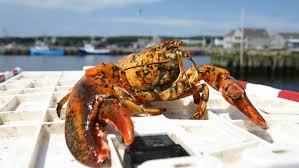 Louisbourg Seafood Experience ...