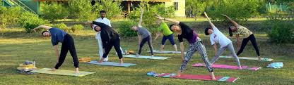 best yoga retreat in india for beginners