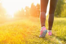 walking shoes and sneakers for women