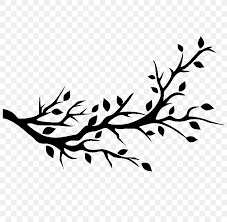 Bird Wall Decal Tree Branch Png 800x800px Bird Art Artwork Beak Black Download Free