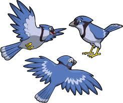 Blue Jay Set Creative For Kids