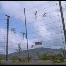 Electric Fence Jurassic Park Wiki Fandom