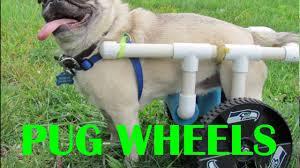 diy pug wheels you