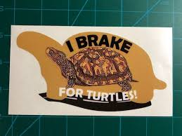 I Brake For Turtles Box Turtle Decal Sticker Printed Etsy