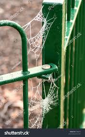 Frozen Spider Web Corner Metal Fence Stock Photo Edit Now 748019