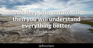 albert einstein look deep into nature and then you will