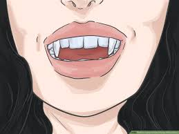 how to apply vire fangs without glue