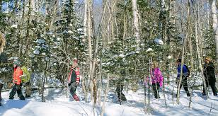 More Unique Snowshoe Trails In Ontario's Cottage Country