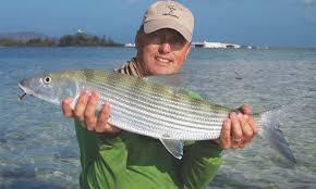 Ep. 62: Dr. Aaron Adams on Snook, Bonefish, Tarpon and Permit ...