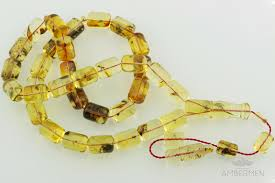 fossil insects genuine baltic amber