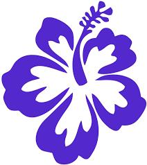 Amazon Com Dixies Decals Hibiscus Flower Hawaiian Car Truck Window Vinyl Decal Stickerpurple 0002 Arts Crafts Sewing