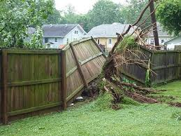 Fence Repairs Are They A Shared Cost With My Neighbor
