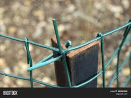 Metal Mesh Green Wire Image Photo Free Trial Bigstock