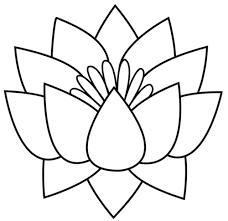 flower black and white flower