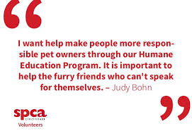 spca volunteer quotes