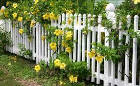 6 Ways Of Building Stunning Garden Border Fence