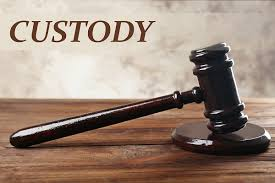 Image result for custody word