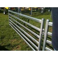 Goat Sheep Goat Sheep Manufacturers And Suppliers At Everychina Com
