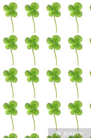four leaf clover wallpaper pixers
