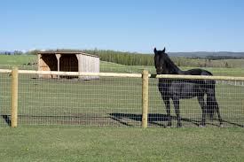 7 Sensitive Tips And Tricks Fence Ideas Pictures Wooden Fence Kits Lowes Privac Fence Ideas Kits Lowesprivac Pictu In 2020 Horse Fencing Backyard Fences Horses