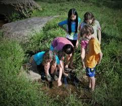 Wildrock Lures Kids Away From Screens to Healthy Outdoor Play | WVTF