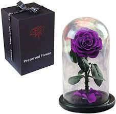 dppan everlasting real enchanted rose