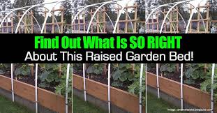 why this raised garden bed is made the