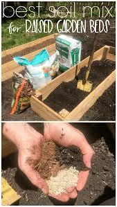 raised beds in vegetable gardens
