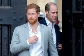 Prince Harry and William's rift sparked when Wills 'told him to heed  Princess Diana's warning not to marry in haste'